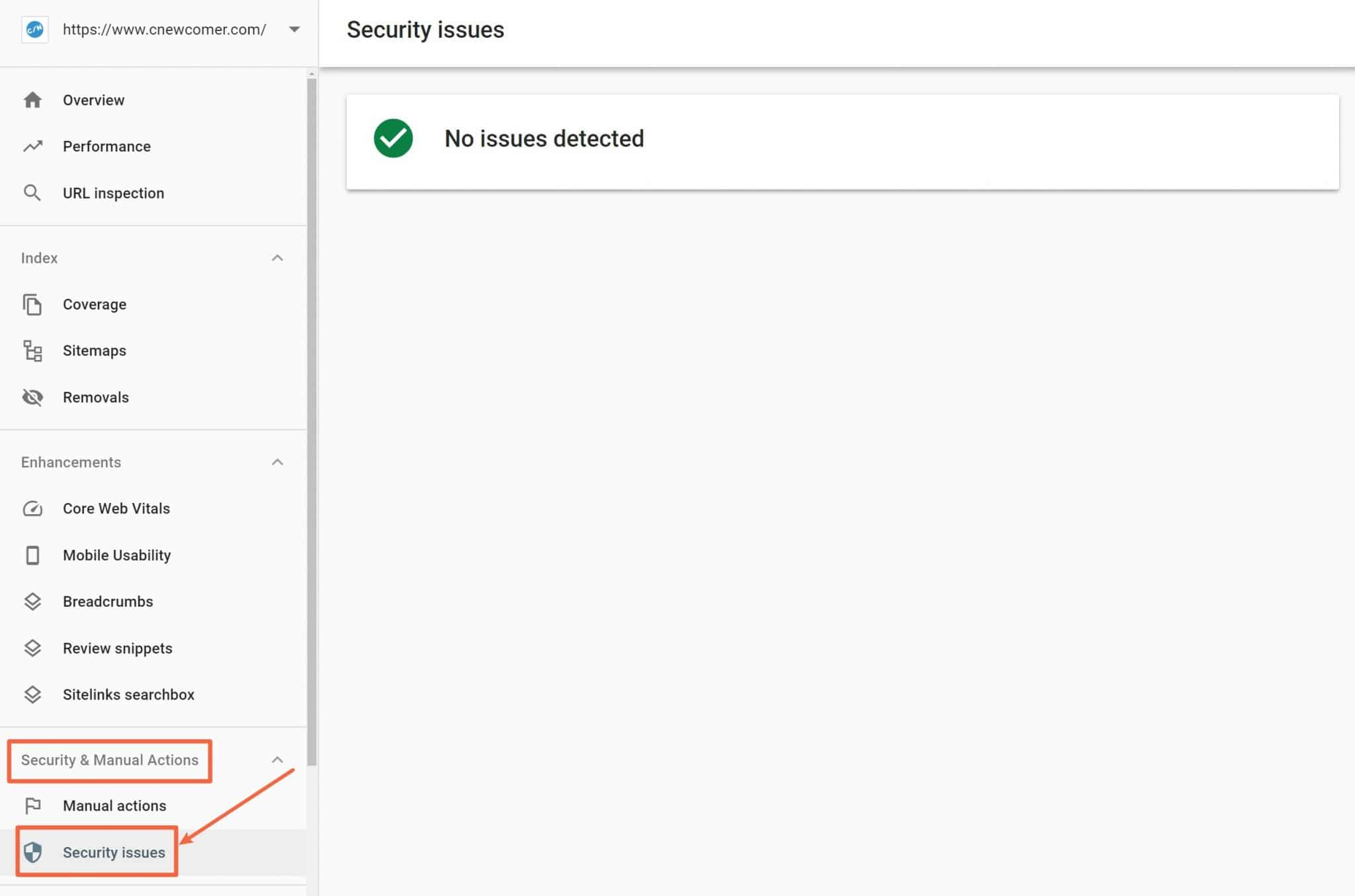 Security issues in search Console