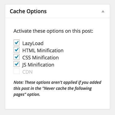 WP Rocket - Cache Options Meta Box